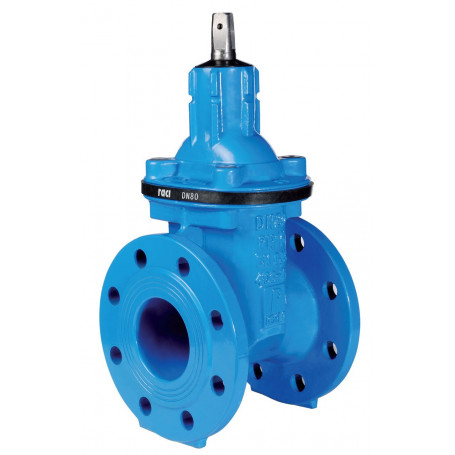 RACI SHORT BODY GATE VALVE DN150 PN25 SOFT SEATED