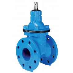 RACI SHORT BODY GATE VALVE DN65 PN25 SOFT SEATED