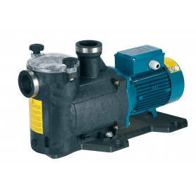 ELECTRIC PUMP CALPEDA MPCM 21/A 230/50 Hz TUV