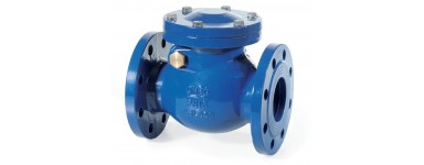 SWING CHECK VALVES - CAST-IRON