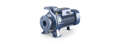 "STANDARDIZED ""EN 733"" CENTRIFUGAL PUMPS - PEDROLLO F SERIES"