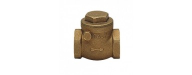 CHECK SWING VALVES - BRASS